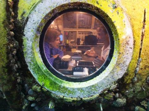 incredible underwater shots of astronauts aquarius reef base fabian cousteau